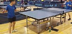 אליפות טניס שולחן לבתי הספר היסודיים